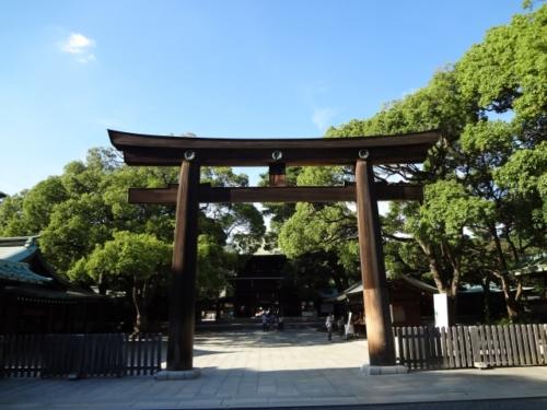 身内が亡くなったら初詣は控えるべき?喪中、神社とお寺の違いも説明します